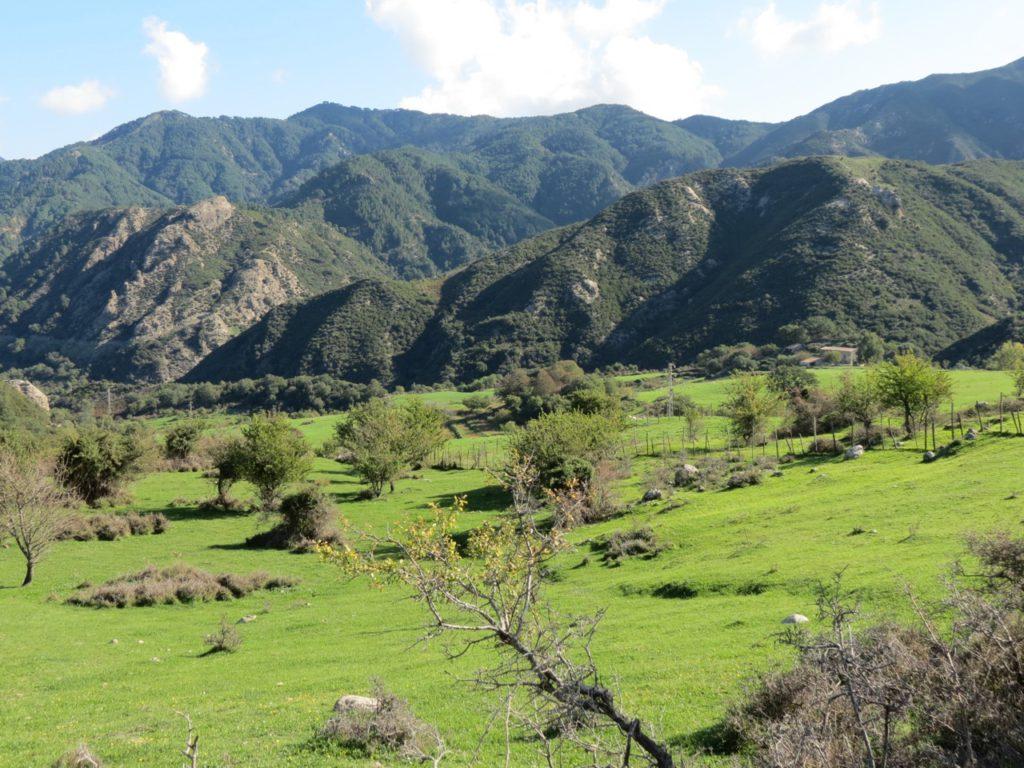 meadows in the Peloritani