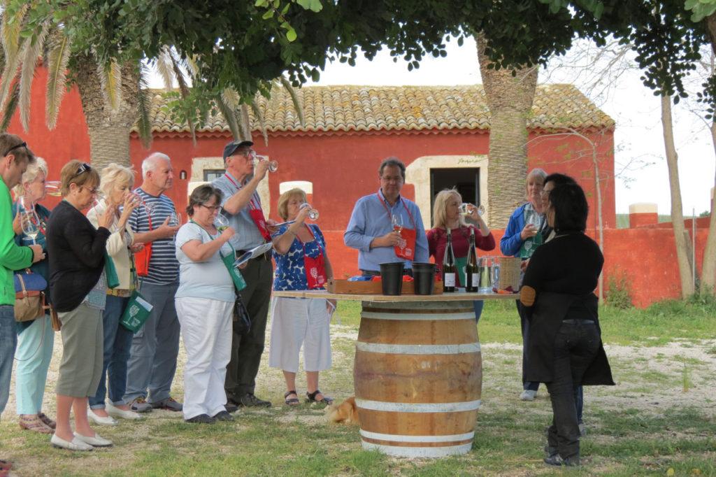Wine-tasting at Buonivini
